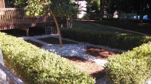 landscaping three
